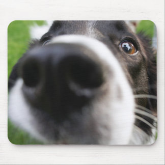 Border Collie Dog Nose Mouse Mat