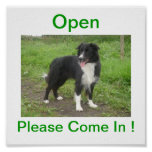 Border Collie Dog Open For Business Sign Poster