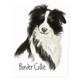 Border Collie Dog Pet Animal Postcard