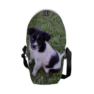 BORDER COLLIE DOG RURAL QUEENSLAND AUSTRALIA COMMUTER BAG