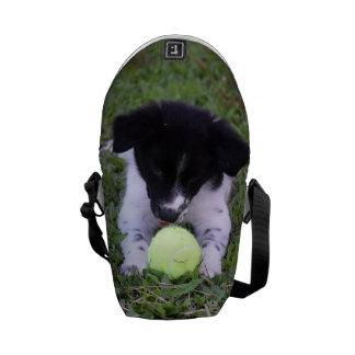 BORDER COLLIE DOG RURAL QUEENSLAND AUSTRALIA MESSENGER BAGS