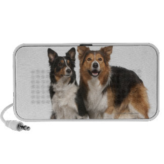 Border collie family iPod speakers