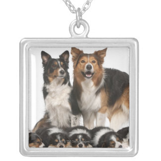 Border collie family silver plated necklace