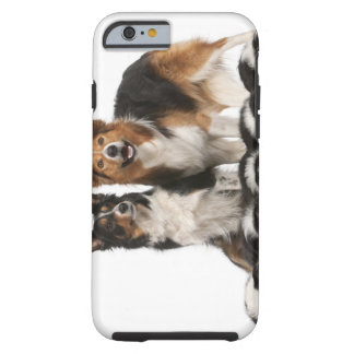 Border collie family tough iPhone 6 case
