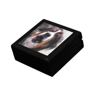 BORDER COLLIE GIFT BOX