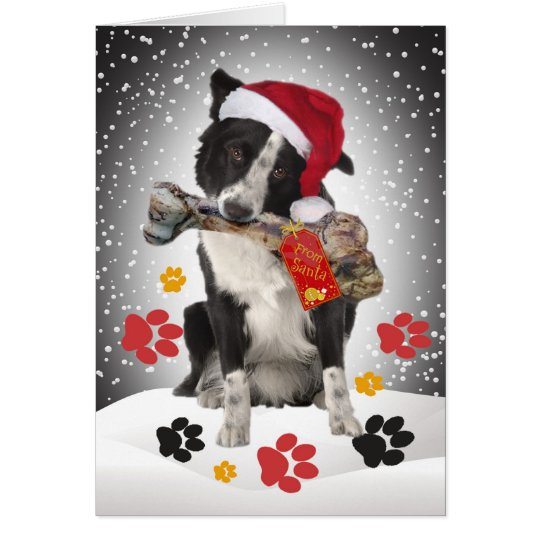 Border Collie Gift From Santa Cards