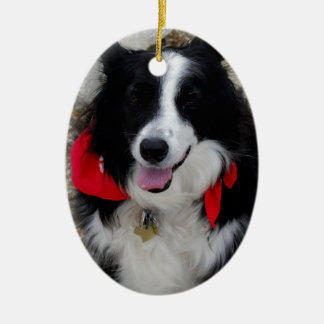 Border Collie Gifts Christmas Ornament