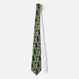 Border Collie in Dandelions Tie