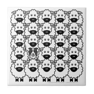 Border Collie in the Sheep Tile
