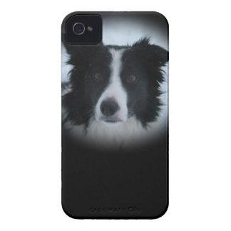 Border Collie iPhone 4 Case-Mate Cases
