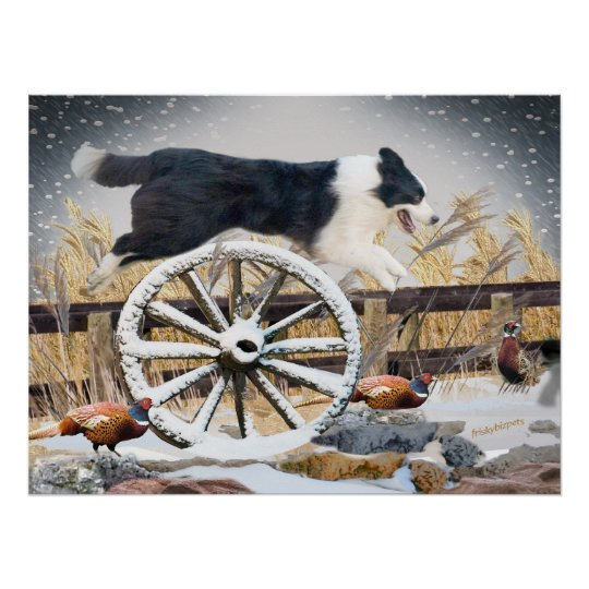 Border Collie Jumping wagon wheel Poster