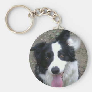 Border Collie Key Chain