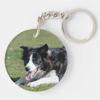 Border Collie Laying Down Key Ring