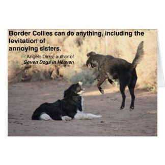 Border Collie Levitates Black Lab Card