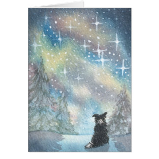 Border Collie Looks At Starry Sky, Holidays CARD