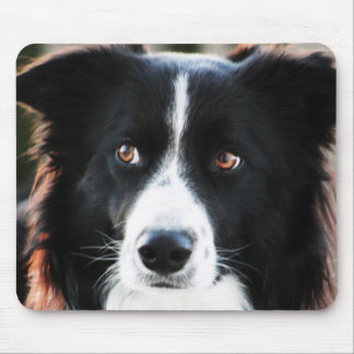 Border Collie Mouse Mat