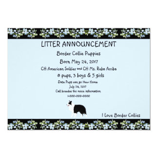 Border Collie on Black Bluebells Card