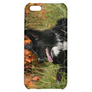 Border Collie Panting Laying Down Cover For iPhone 5C
