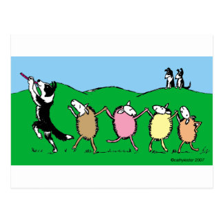Border Collie Pied Piper Postcard