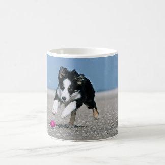 Border collie pouncing basic white mug