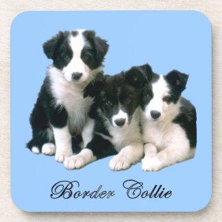 Border Collie Puppies Coaster