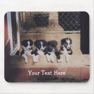 Border Collie Puppies Dog Mousepad