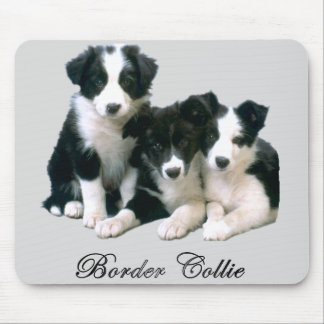 Border Collie Puppies Mouse Mat