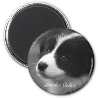 Border Collie puppy 6 Cm Round Magnet