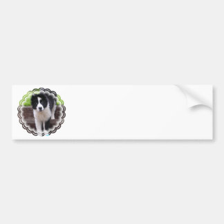 Border Collie Puppy Bumper Sticker