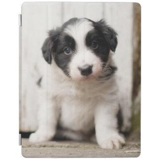 Border Collie Puppy iPad Cover