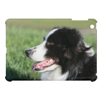 Border Collie Puppy Laying Down iPad Mini Covers