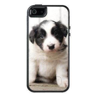Border Collie Puppy OtterBox iPhone 5/5s/SE Case
