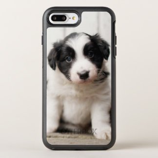 Border Collie Puppy OtterBox Symmetry iPhone 8 Plus/7 Plus Case