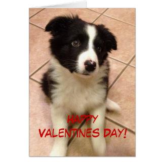 Border Collie Puppy Valentine's Day Card