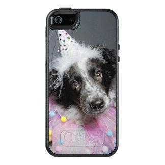 Border Collie Puppy Wearing Hat OtterBox iPhone 5/5s/SE Case
