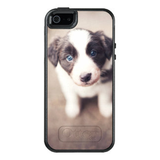 Border Collie Puppy With Blue Eyes OtterBox iPhone 5/5s/SE Case