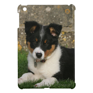 Border Collie Puppy with Leaf in Mouth Case For The iPad Mini