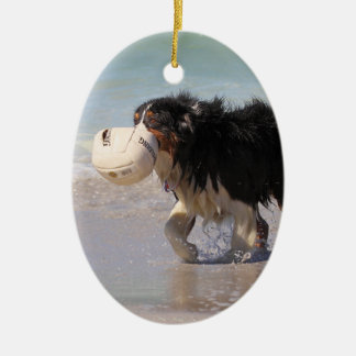 Border Collie - Soccer Anyone? Christmas Ornament