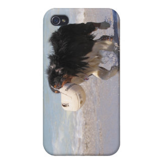 Border Collie - Soccer Anyone? Cover For iPhone 4