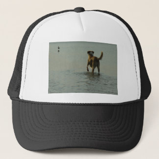 Border Collie - Tipper and Seagull Trucker Hat