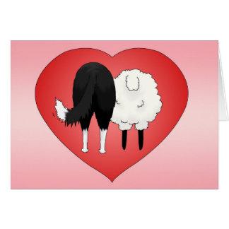Border Collie Valentine's Day Card