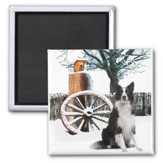 Border Collie wagon wheel winter scene Square Magnet