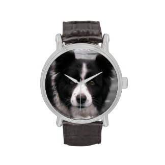 Border Collie Watches