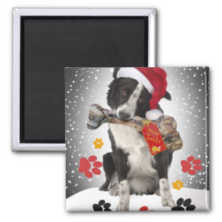 Border Collie Yappy Holidays gifts Fridge Magnets