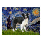 Border Collie (Z) - Starry Night Poster