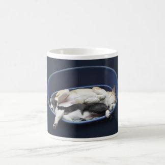 Border Collies - Dixie/Tipper sleeping Coffee Mugs