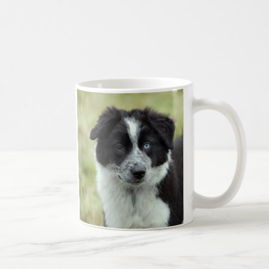 Border Collies I love heart mug, present idea