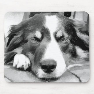 BORDER COLLIES MOUSE PAD