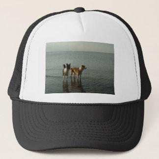 Border Collies - Tipper/Dixie at Sea Trucker Hat