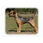 Border Terrier 9Y325D-033 Post Cards